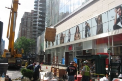 1269 lexington avenue penthouse nyc - vert gardens job 005