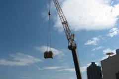 1269 lexington avenue penthouse nyc - vert gardens job 026